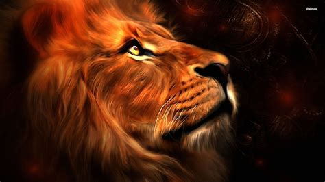 wallpaper full hd lion lion hd wallpapers lion hd pictures free download hd