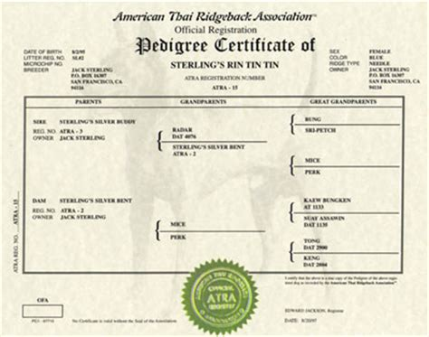 pedigree certificate template free atra pedigrees