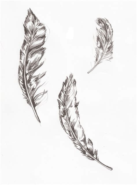 tattoo feather sketch hand drawn feathers illustration news events general