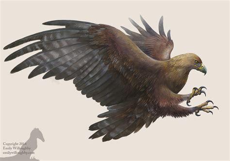 golden eagle emily willoughby art