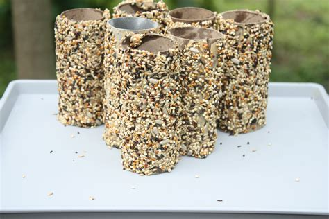 Recycled Toilet Paper Roll Crafts - recycled toilet paper roll crafts bird feeder