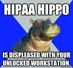 Skeptical Hippo Meme - 39 best images about hipaa humor on pinterest is 1