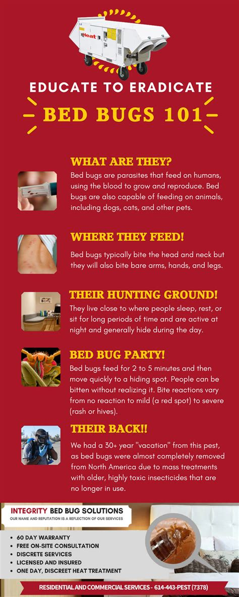 how long can bed bugs go without food how long can bed bugs go without eating how long can bed