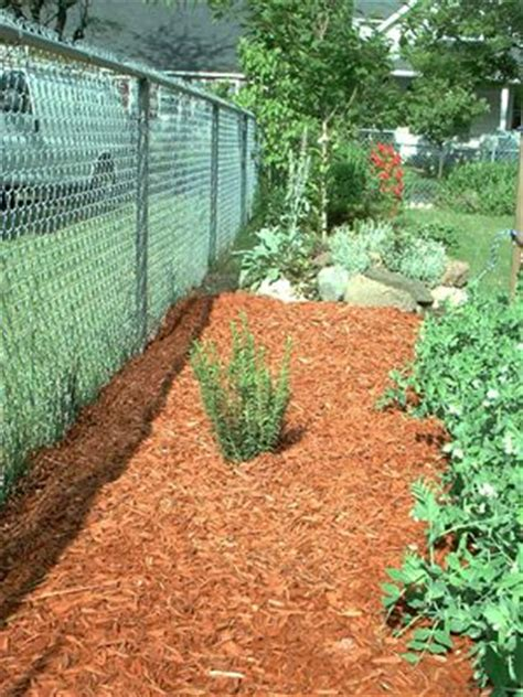 Install Landscape Fabric Existing Plants Installing Landscape Fabric For