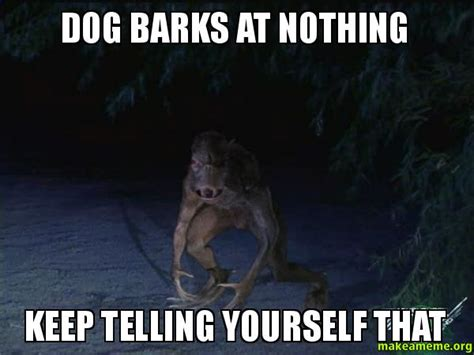 Dog Barking Meme - dog barks at nothing keep telling yourself that make a