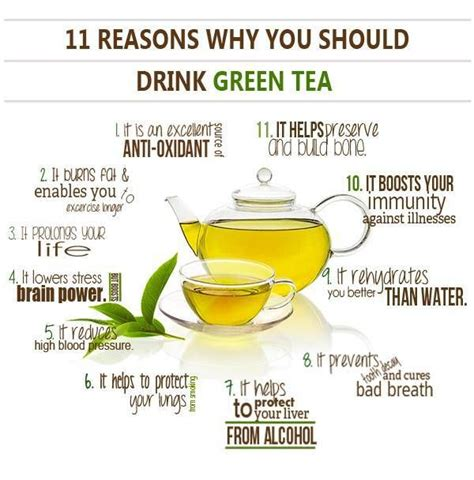 11 reasons why you should drink green tea on our weigh to health
