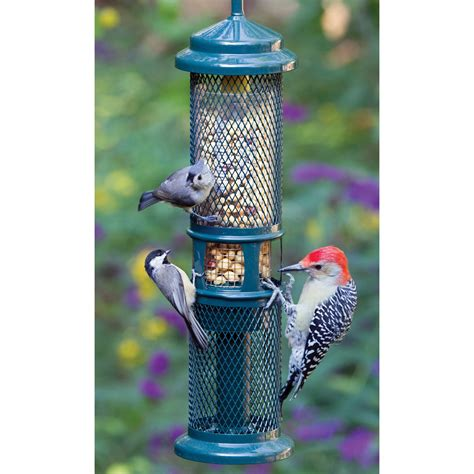 brome squirrel proof peanut bird feeder dfohome
