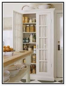 Freestanding Pantry Cabinet For Kitchen Free Standing Kitchen Pantry Cabinets Cdxnd Home