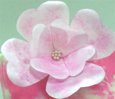 wafer paper fantasy flower tutorial tried a wafer paper fantasy flower and a spackled cake in