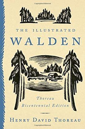 walden book value expect great things a birthday for henry
