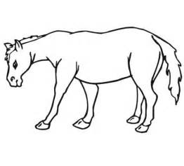 coloring pages of mule deer mule deer coloring pages