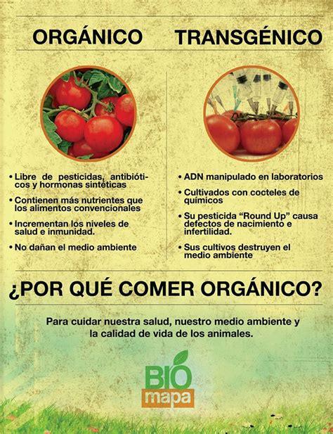 definicion de alimentos transgenicos alimentos org 225 nicos vs alimentos transg 233 nicos manquenor
