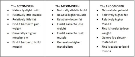 what bodytype are you the ectomorph app