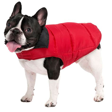 coats for dogs pics for gt coats