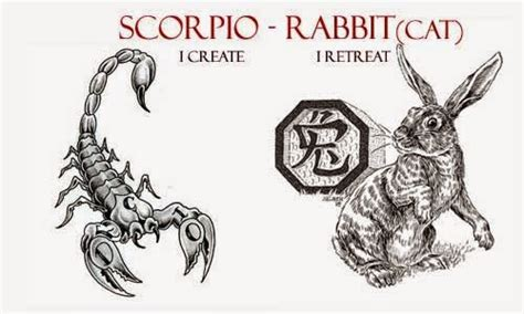 new year rabbit personality scorpio rabbit personality scorpio cat scorpio quotes