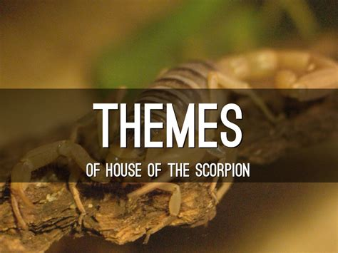 house of scorpion house of the scorpion by ccanning17