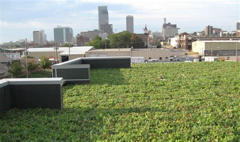 siena francis house liveroof hybrid green roofs