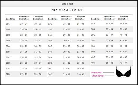 Bra Size Chart bras size chart seekrets