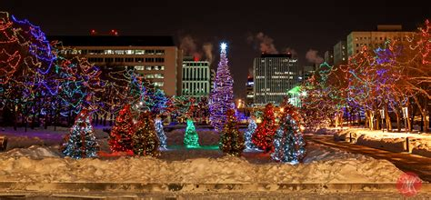 christmas in edmonton ugly sweater trees lights