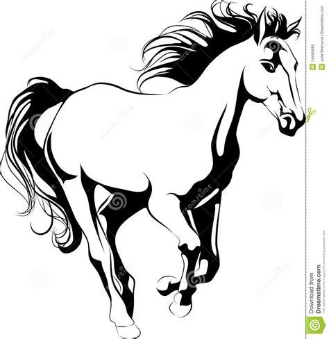 imagenes a blanco y negro de caballos caballo galopante fotos de archivo imagen 14490843