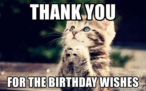 Birthday Thanks Meme - thank you for the birthday wishes thank you cat meme generator