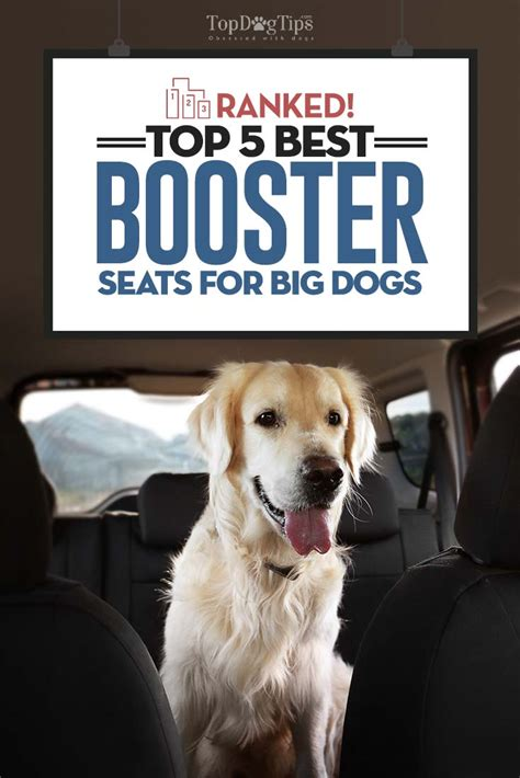 best big dogs top 5 best large booster seats for medium or big dogs 2017