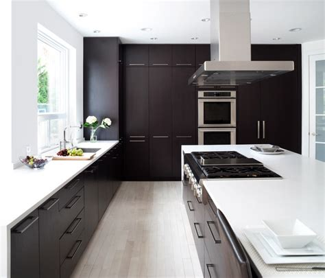 modern style cabinets contemporary kitchen dc metro