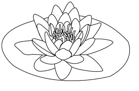 Flowers Coloring Pages Print by Free Printable Lotus Coloring Pages For