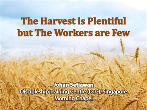 The Harvest Is Plentiful But The Workers Are Few | the harvest are plentiful but the workers are few