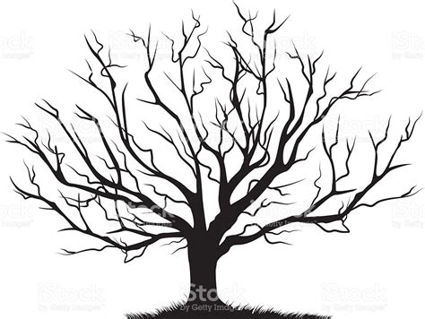 free images of trees deciduous bare tree empty branches black silhouette stock