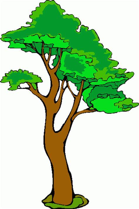 gambar pohon kartun clipart best