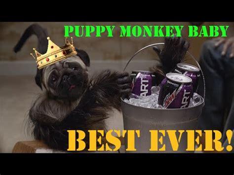 puppy monkey baby new year puppy monkey baby weirdest commercial