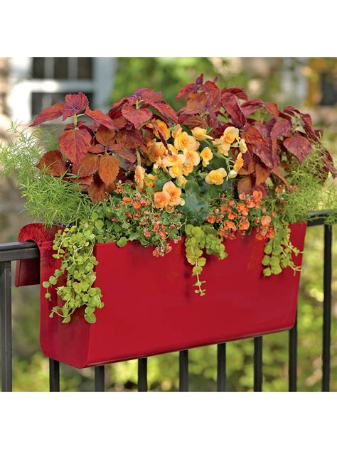 Balcony Garden Planters by Balcony Garden Viva Self Watering Balcony Railing Planter