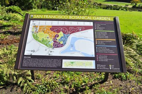 botanical garden san francisco san francisco botanical gardens tips to visit