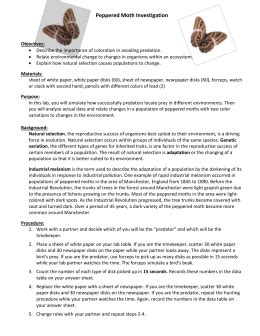 Peppered Moth Simulation Worksheet Answers by Peppered Moth Worksheet Photos Getadating