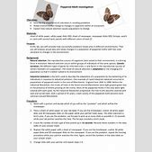 Peppered Moth Worksheet   Kidz Activities furthermore  additionally Peppered Moth Simulation Worksheet Answers 1660 Best Education furthermore Peppered Moth Worksheet   Kidz Activities moreover Peppered Moth Natural Selection Simulation Lab by Marjorie Marchin furthermore Peppered Moth Simulation Worksheet Answers   Q O U N in addition Investigation further Evolution by Natural Selection Worksheet Answers   Briefencounters furthermore Chapter 16   mrs bagwell biology as well  moreover Natural Selection Worksheet For Middle  c09acf7b0c50   Bbcpc likewise Peppered Moth Simulation Graphing swf   YouTube in addition Instructions Click the link below to read more information on in addition  besides Peppered Moth Simulation Lab together with Peppered Moth Simulation   iani info. on peppered moth simulation worksheet answers