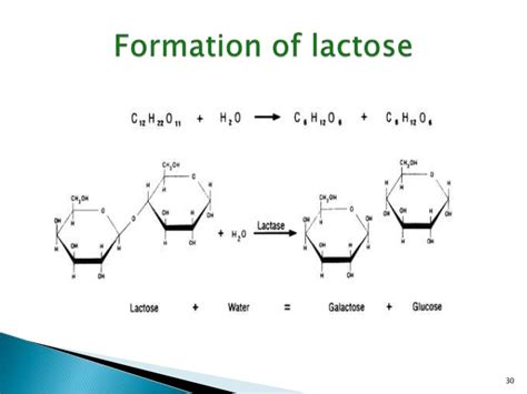 diagram of lactose and lactase reaction diagram and description of lactose lactase reaction choice