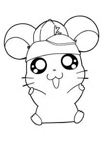 hamster coloring pages hamtaro coloring pages coloring page hamster in