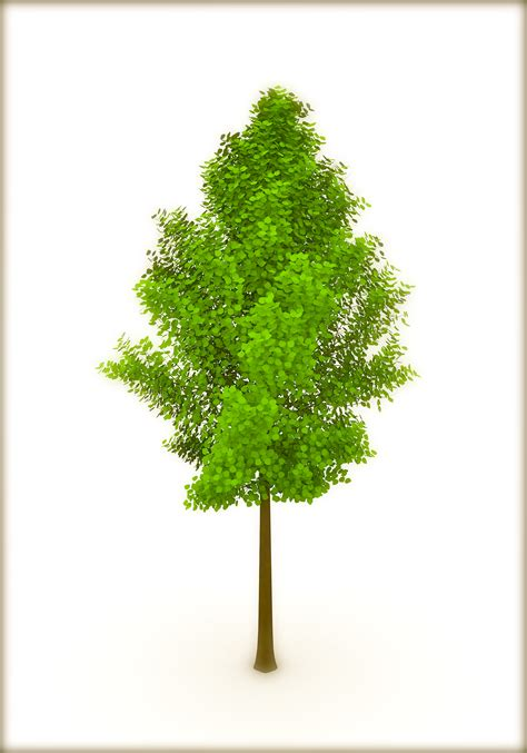images of trees earth day trees or a single tree corner 3d