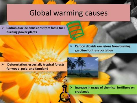 8 Worthy Global Causes by Global Warming Ppt Rahul Kushwaha