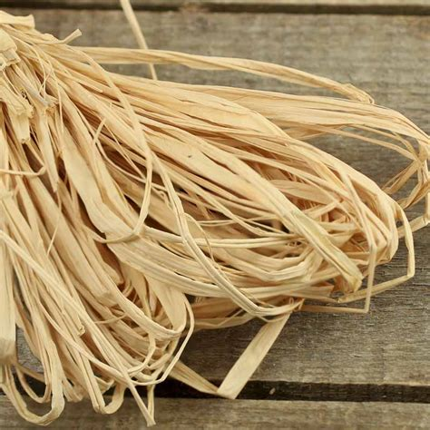 natural dried raffia ribbon fall craft supplies fall