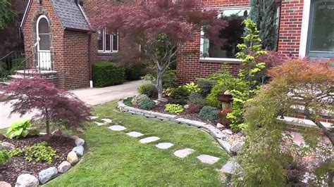maple tree front yard trees for your garden wearefound home design