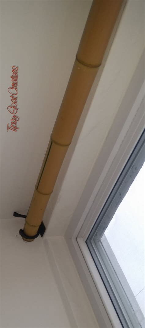 long curtain pole one piece the tipsy goat blog a lifestyle blog about health dogs