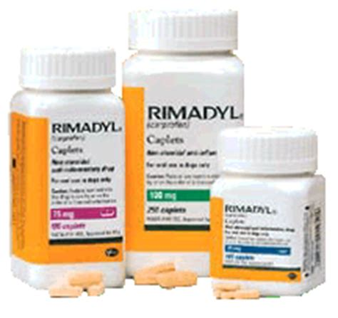 rimadyl for dogs side effects rimadyl better canine health