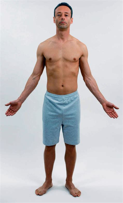 downward position the anatomical position standing erect gazing ahead arms at sides