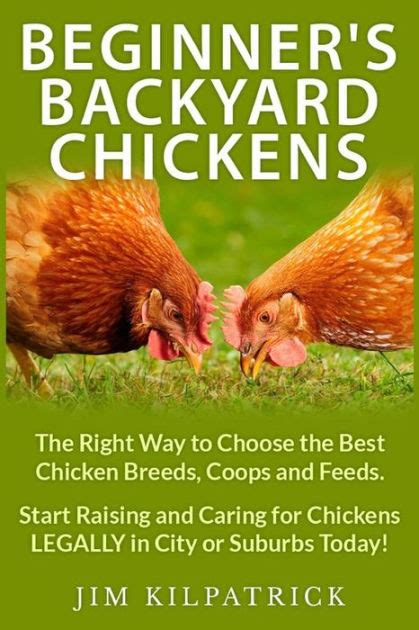 how to care for chickens in your backyard how to care for chickens in your backyard 1000 ideas