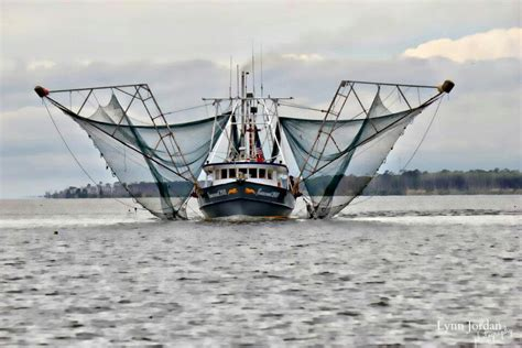 shrimp boat orange beach gulf of mexico gulf coast - Shrimp Boat Orange Beach