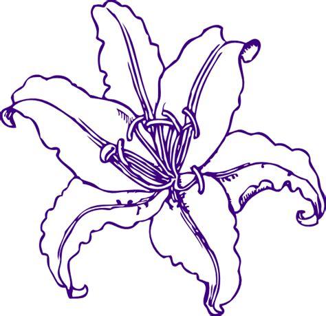 purple lilly clip art  clkercom vector clip art