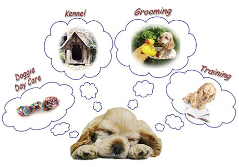 dreaming of puppies bed biscuits pet spa