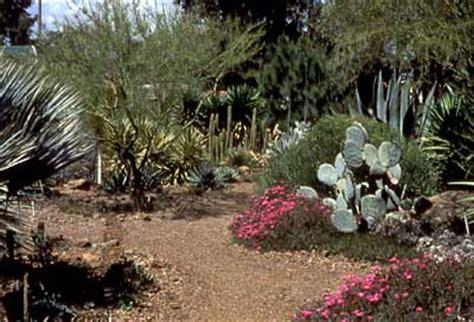Gadens Wa Khamint Garden Reviews The Ruth Bancroft Garden Walnut